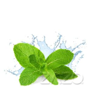 Zazo Fresh Mint Liquid
